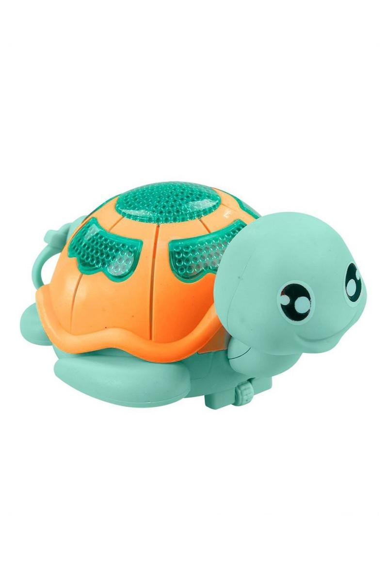 Pilli Sevimli Kaplumbağa