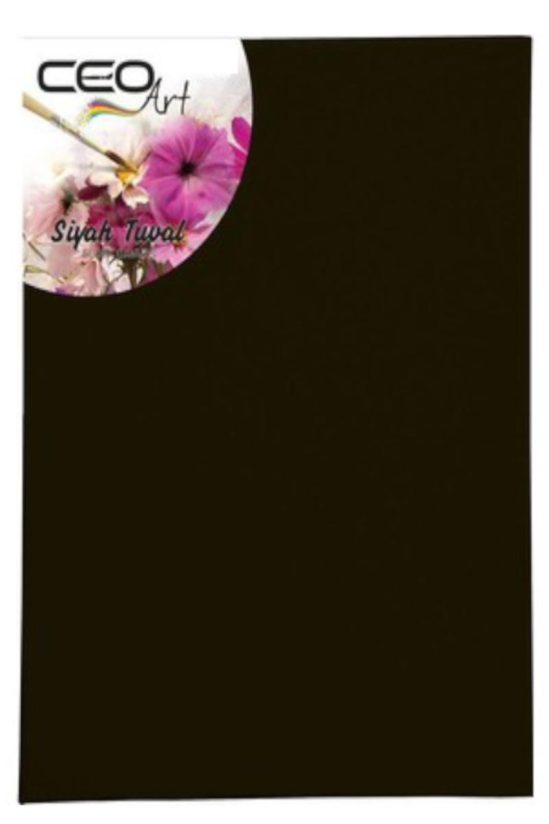 Ceoart 25x35 Siyah Tuval