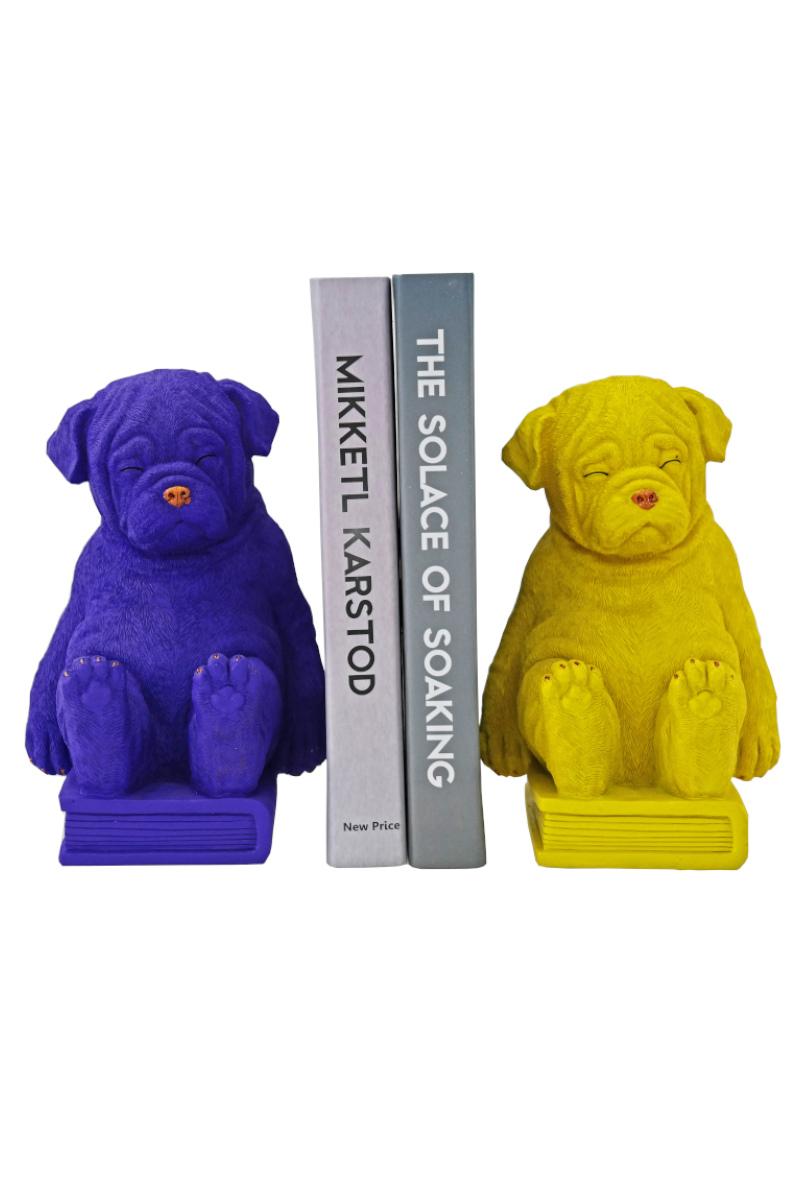 Köpek Kitap Desteği 2'li Sarı ve Mor