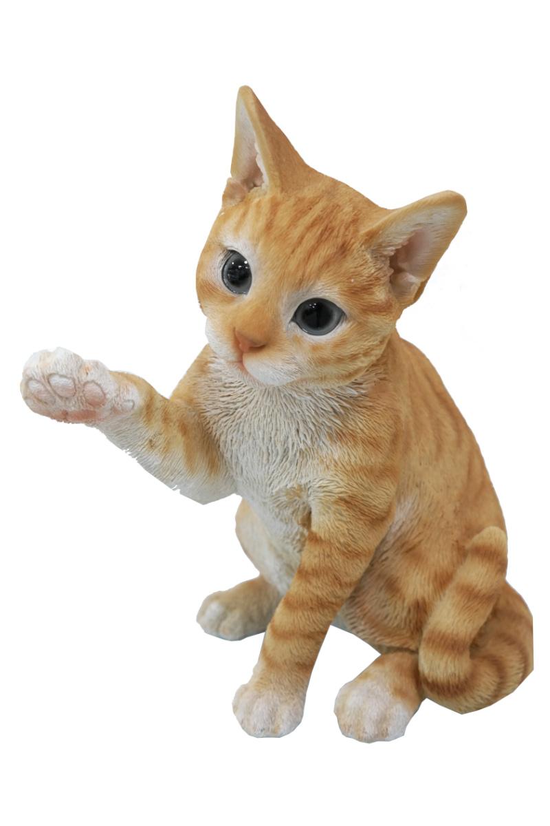 Sarılan Kedi